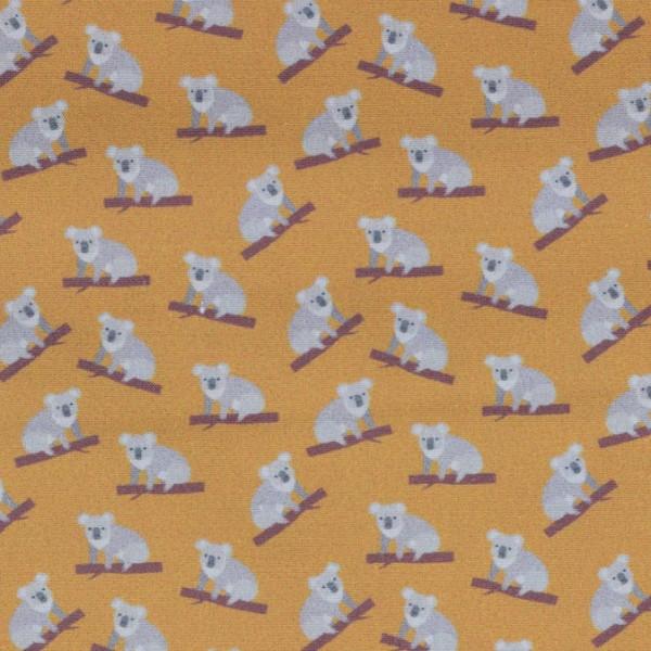 Baumwolle Toni, Koala Bär